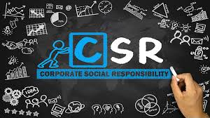 6 Criteria for Selecting a CSR Consultant