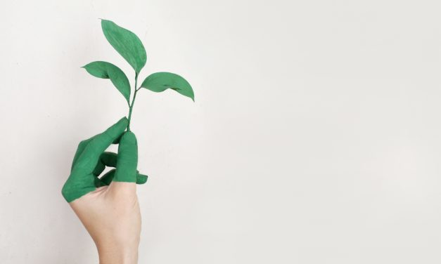 Can Corporates be more Socially Responsible towards the Environment?